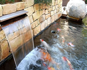 景观鱼池水循环处理设备